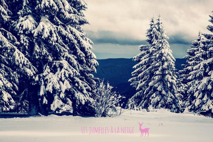 les jumelles dans la neige 2
