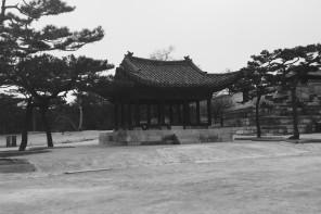 Les jumelles en Corée du Sud